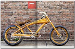 Deginder Cycle, The Bike Book
